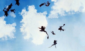 Frogs-falling-from-the-sky-magnolia